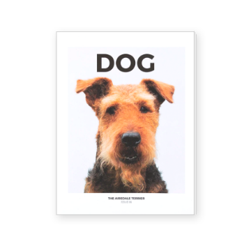 DOG - ISSUE 6